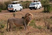 Road Safaris from Mombasa Option 1