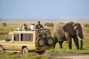 Road Safaris from Nairobi Option 1